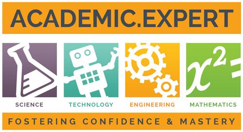 The Academic Expert Logo